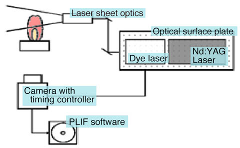 The basic optical system for observing LIF