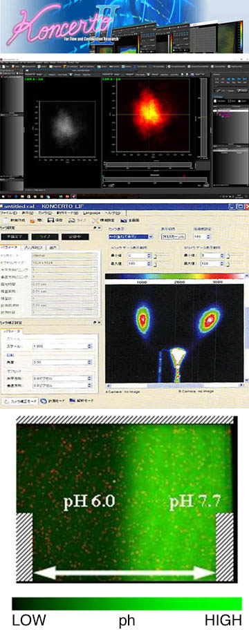 Koncerto LIF ( control and analysis software developed by Saika digital image ) is an integrated imaging measurement software with functions necessary for controlling ultra-sensitive cameras such as ICCD cameras and EMCCD cameras, displaying and analyzing high bit images.