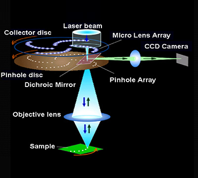 The principle of the confocal scanner